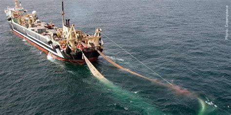 Freezer Kapal Ikan 5 reasons you should be worried about trawlers