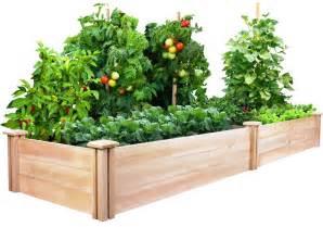 Raised vegetable garden beds let s grow vegetables