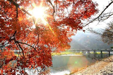 imagenes de japon hermosas bbc mundo el d 237 a en im 225 genes