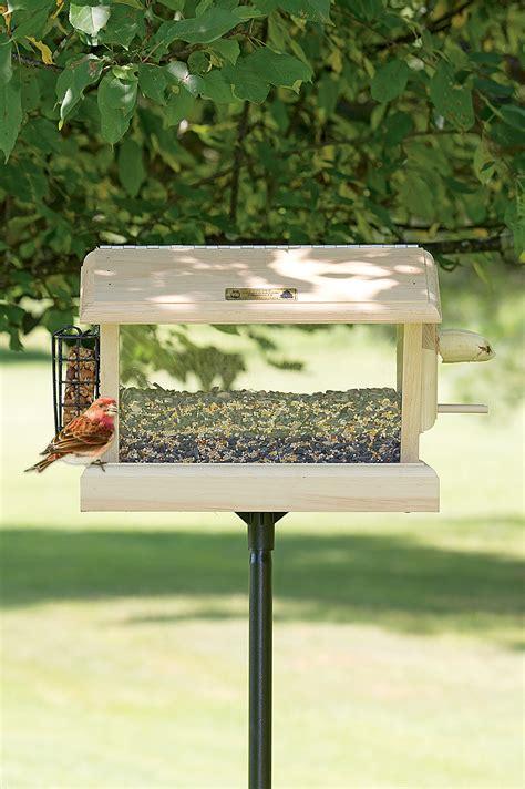 multi bird feeder multi station wood bird feeder