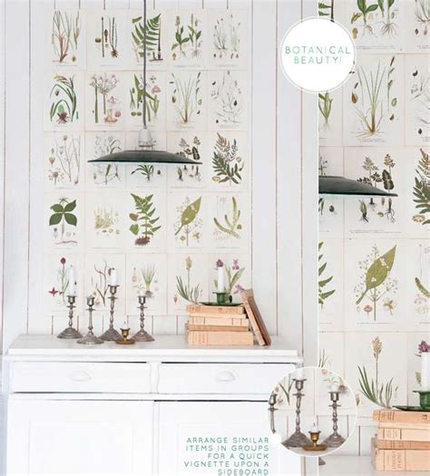 botanical print wallpaper 51 best book wall for dorm images on pinterest murals