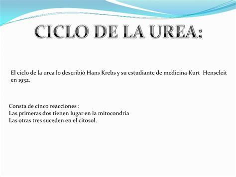 imagenes de ureña venezuela ciclo de la urea