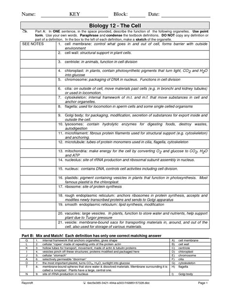 Cells And Their Organelles Worksheet Answers by 16 Best Images Of Cells And Their Organelles Worksheet