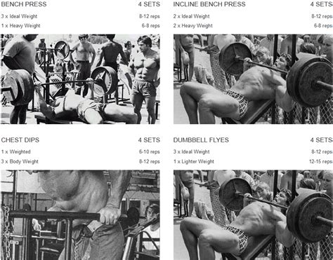 arnold chest workout eoua