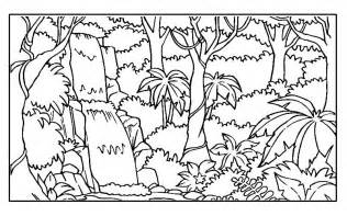 forest coloring pages rainforest colotring pages