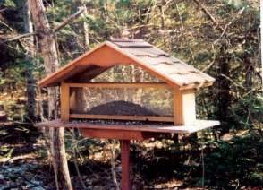 Large Bird Feeders Country Lore Build A Large Bird Feeder Diy