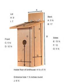 birdhouse dimensions