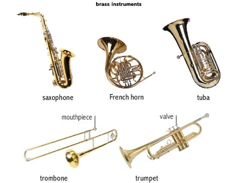 Brass Noun Definition Pictures Pronunciation And Usage