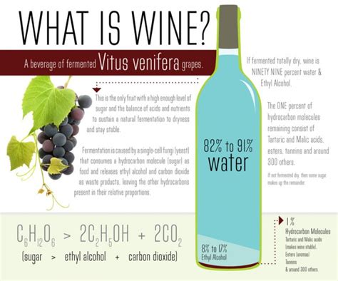 What Is In by What Is Wine Anyways A Cool Infographic For The Chemist