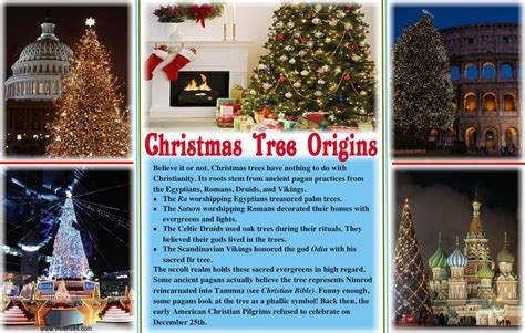 what is the origin of the christmas tree sanjonmotel