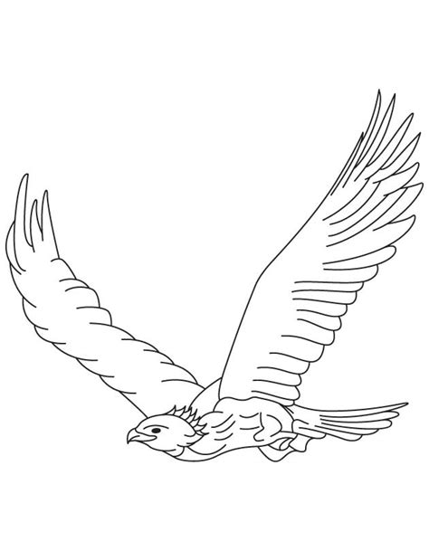 coloring page eagle flying eagle coloring page coloring home