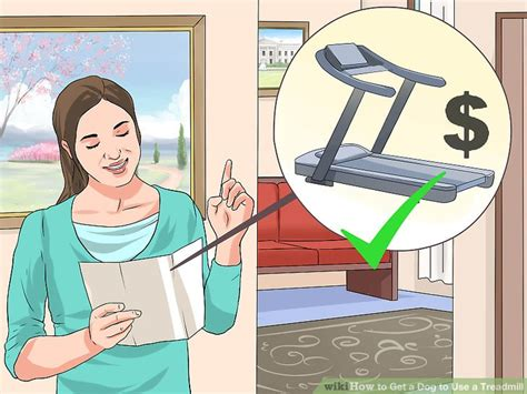 how to get a dog to use a dog house how to get a dog to use a treadmill 10 steps with pictures