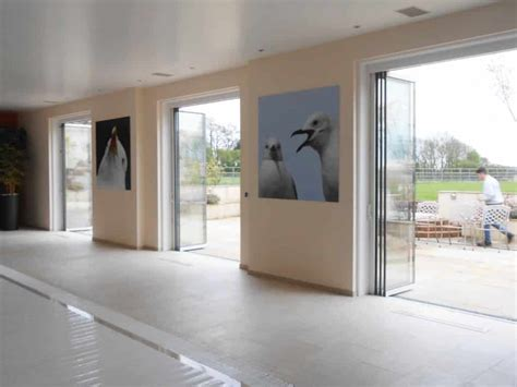 Frameless Glass Patio Doors Pivoting Bi Folding Doors Fgc