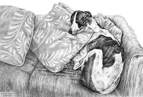 greyhound couch potato couch potato greyhound dog print by kelli swan