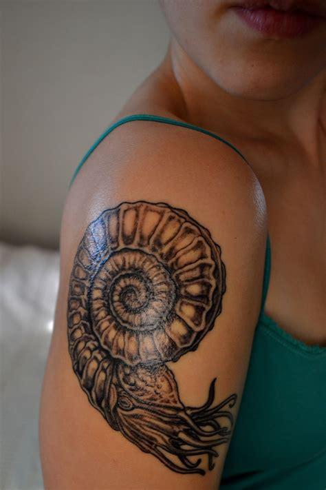 ammonite tattoo my ammonite tattoos ammonite