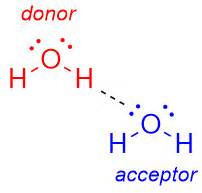 proton h acceptor terminology what is a hydrogen bond acceptor and donor
