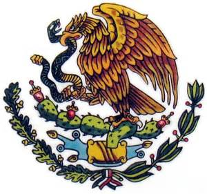 mexican flag eagle google search denisse s shoes