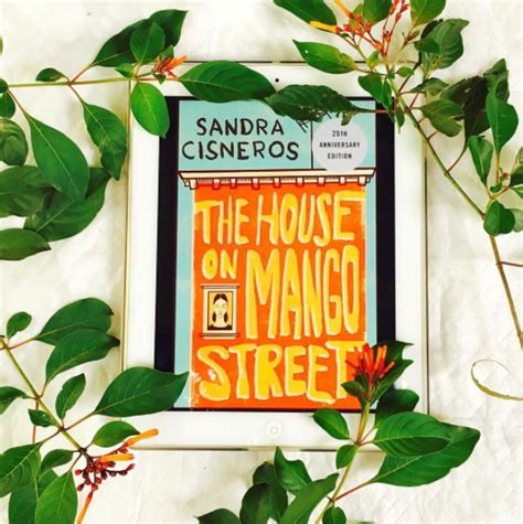 themes found in the house on mango street 18 book characters that accurately represent mental illness