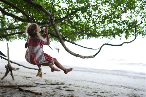swinging on rope a walk to the rope swings bainbridge island wa