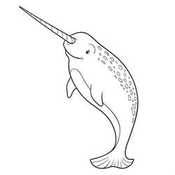 narwhal coloring page for and whale coloring pages