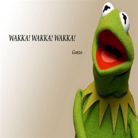 Kermit Meme Images - kermit the frog funny funny kermit cocaine quotes