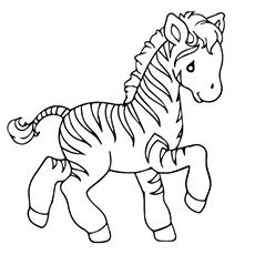 blank zebra coloring page ᗗtop 25 free printable zoo ᗔ coloring coloring pages