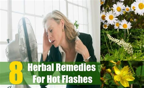 Home Remedies For Flashes by 8 Best Herbal Remedies For Flashes The Best Herbs