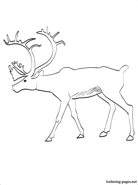 caribou printable coloring pages