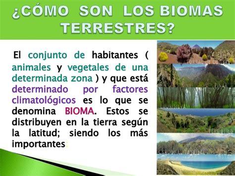 biomas y ecosistemas terrestres del per 250