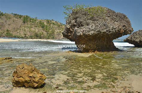pantai siung memiliki  jalur panjat tebing