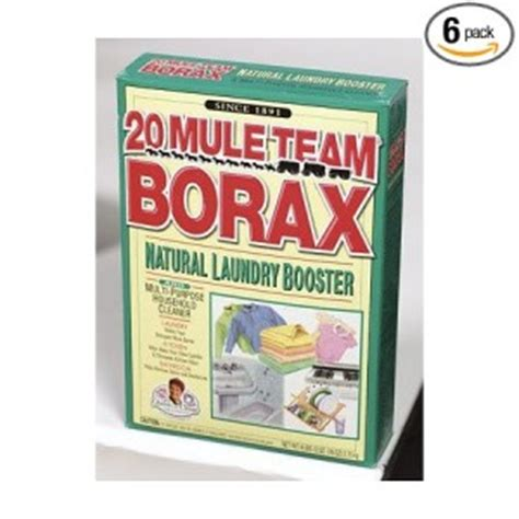 borax bed bugs 28 images roaches on pinterest veterans
