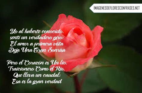 imagenes de rosas para mi novia im 225 genes de rosas con poemas cortos de amor