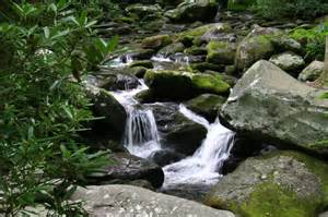Roaring Fork Blue Roads To Hiking Trails Roaring Fork Motor Nature Trail