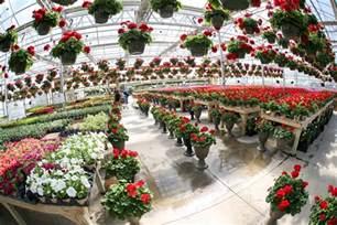 wallaces garden center