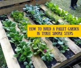 schlichter garten 25 best ideas about pallet gardening on