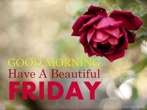 good morning friday   beautiful  good