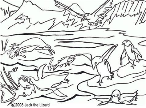 Free Coloring Pages Of Animal Habitat Animal Habitat Coloring Pages