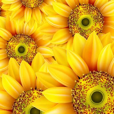 sunflower pattern coreldraw sunflower free vector download 231 free vector for