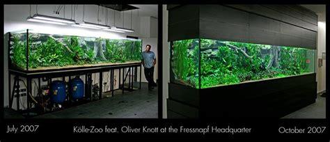 Oliver Knott Aquascaping by Oliver Knott Aquascapi Sequa