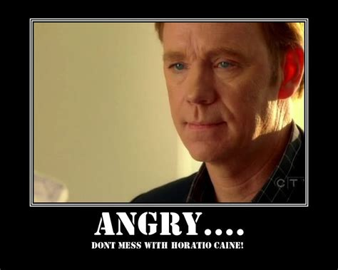 Horatio Caine Memes - horatio caine meme quotes