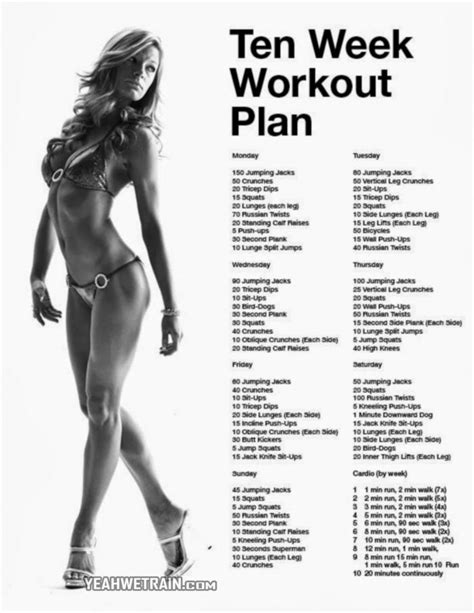 1000 ideas about workout plans on exercise