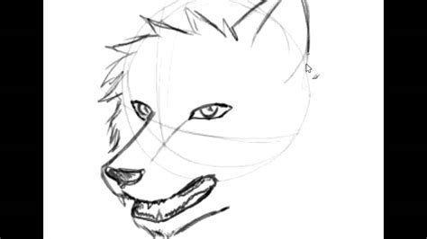 Easy Way To Draw A by Easy Drawings Of Wolves Faces Www Imgkid The Image