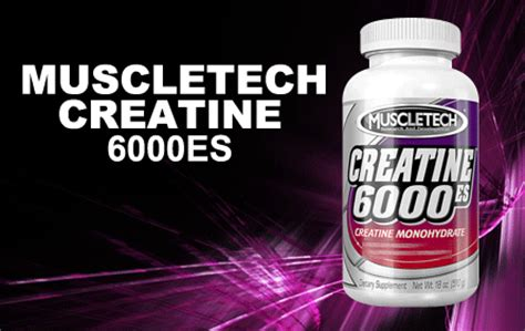 creatine 5 grams a day creatine 6000 es by muscletech 510 grams