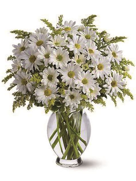 fiori a domicilio a roma fiori a roma consegna fiori a domicilio a roma capitale