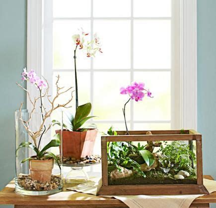 indoor plants arrangement ideas 131 best images about in the home office on pinterest