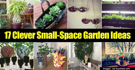 Gardening In Small Spaces Ideas 17 Clever Small Space Garden Ideas