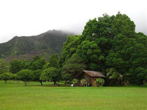Small Homes Kauai Kauai