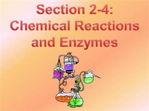 section 2 4 chemical reactions and enzymes chemical reactions and enzymes powerpoint authorstream