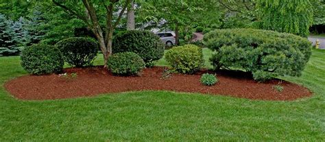 Garden Mulch by How To Mulch Garden Mulching Advantages Types For Dummies