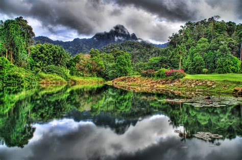 peru natural eden of jungle wallpapers pictures images